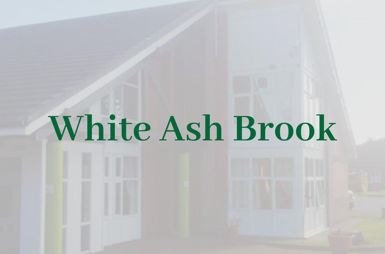 White Ash Brook